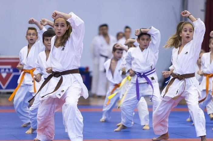 cuantos cinturones hay en karate