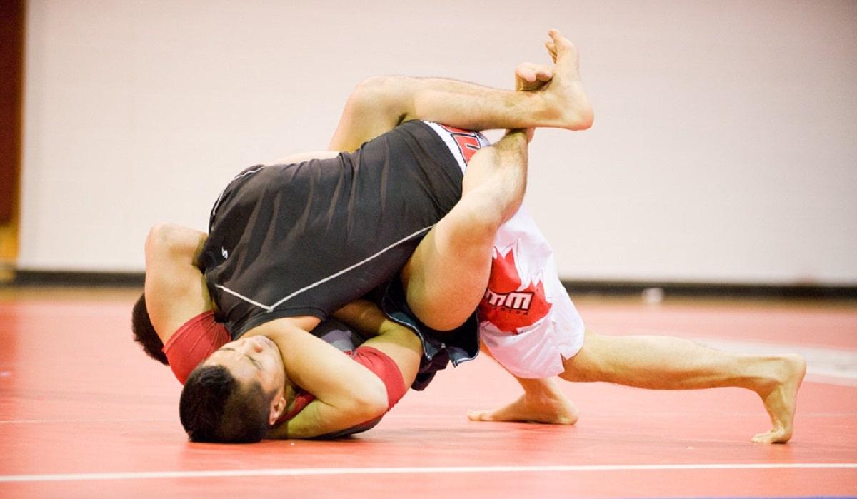 cinturones de jiu jitsu