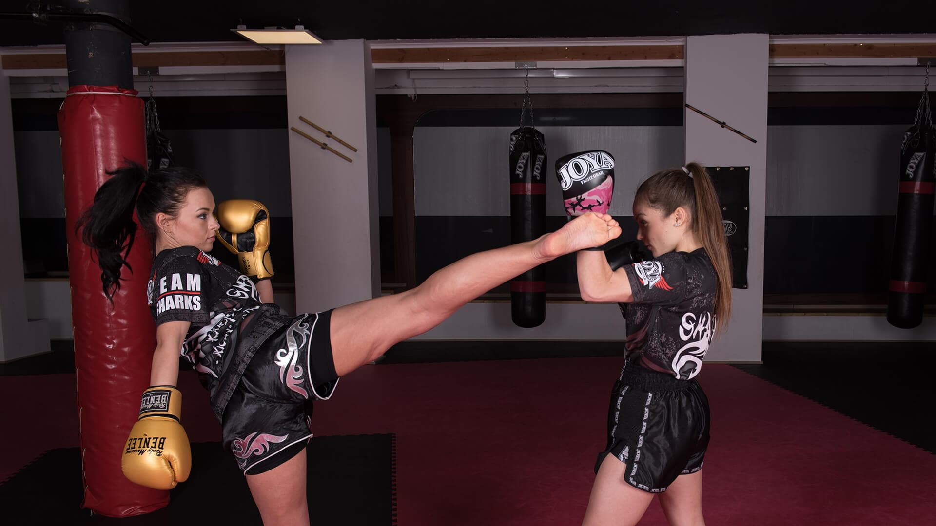 ejercicios muay thai