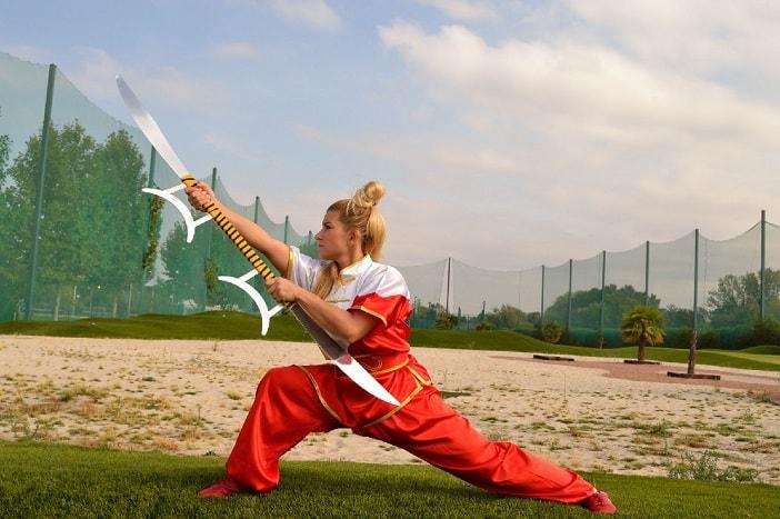 kung fu shaolin tecnicas